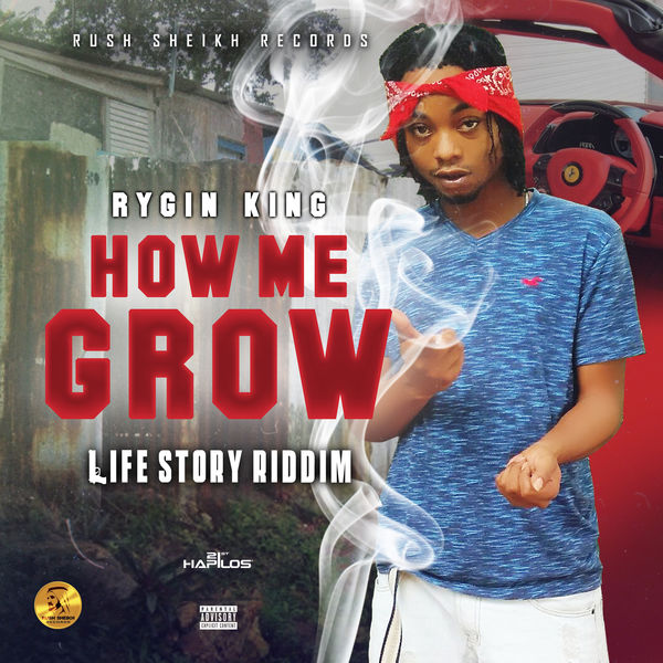 Rygin King – How Me Grow